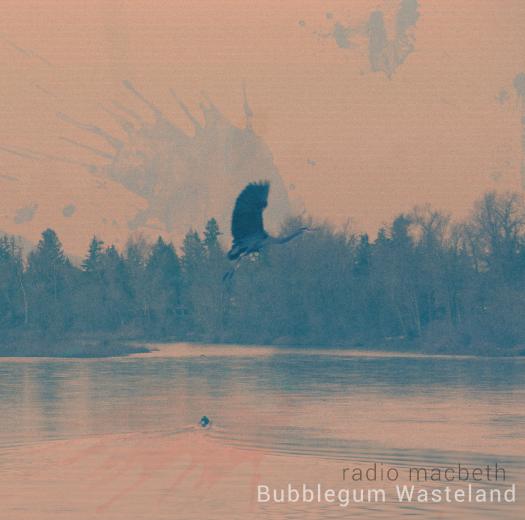 Bubblegum Wasteland FINAL COVER.png